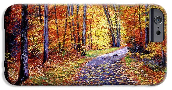 Fallen Leaf iPhone Cases - Leaf Covered Road iPhone Case by David Lloyd Glover