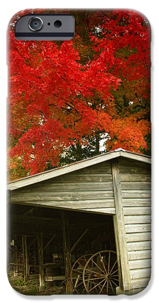 Leaf Change iPhone Cases - Leaf Peeping iPhone Case by Mindy Sommers