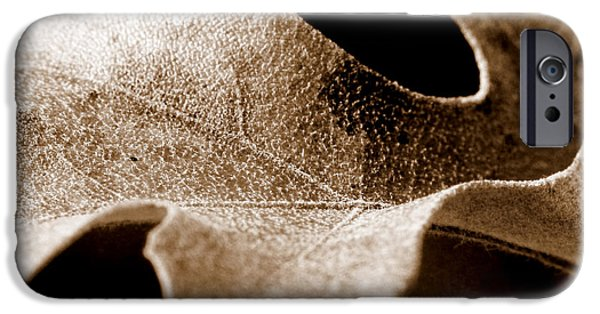 Macro iPhone Cases - Leaf Study in Sepia iPhone Case by Lauren Radke