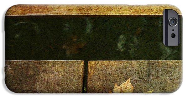 Fall iPhone Cases - Leaf Zen K iPhone Case by Rebecca Cozart