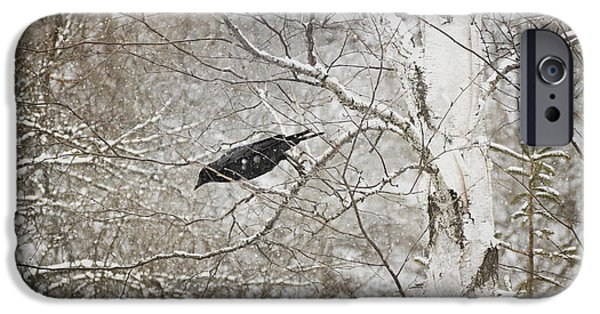 Snowy Day iPhone Cases - Leaping Crow iPhone Case by Angie Rea