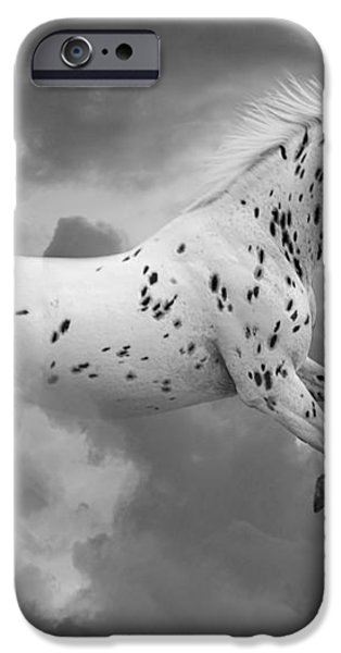 Leopard Appaloosa Cloud Runner iPhone Case by Renee Forth-Fukumoto
