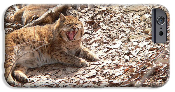 Bobcats Digital iPhone Cases - Let me wake up first iPhone Case by Kevin Lormand