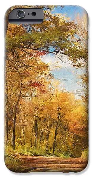 Fall iPhone Cases - Lets Go For A Walk iPhone Case by Lois Bryan