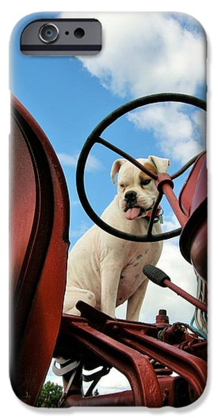 Boxer iPhone Cases - Lets Plow iPhone Case by Vicki Caucutt