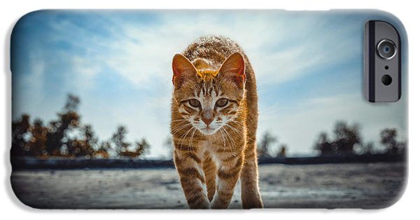 Cat iPhone Cases - Letting Go iPhone Case by Steeven Shaw