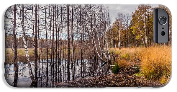 Fall Scenes iPhone Cases - Life and Death iPhone Case by Dmytro Korol