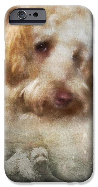 Dogs iPhone Cases - Life of a Doodle iPhone Case by Sandra Clark