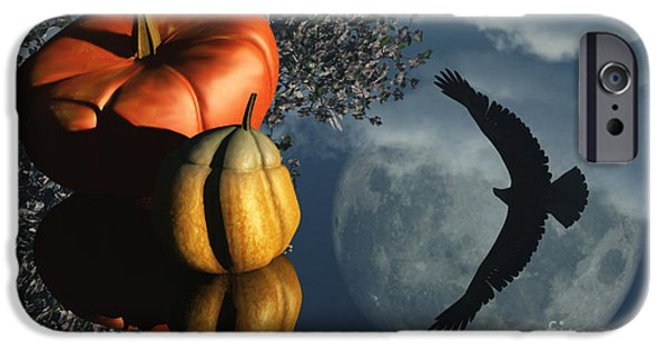 Reflection Harvest iPhone Cases - Lifes Reflections iPhone Case by Richard Rizzo