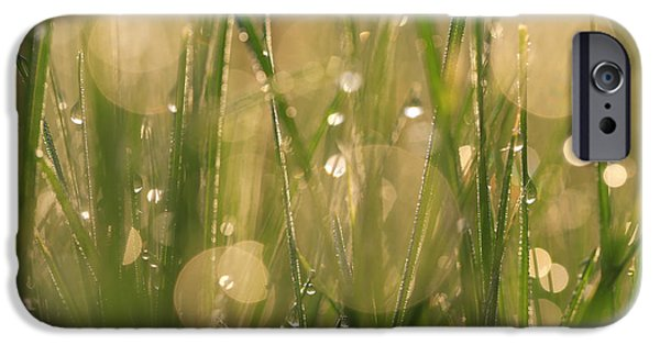 Nature Abstract iPhone Cases - Light Years iPhone Case by Rachel Cohen