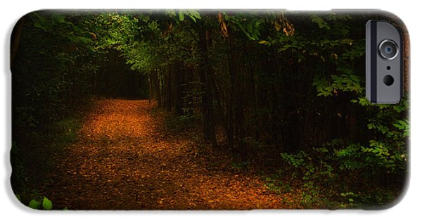 Pathway iPhone Cases - Lighted Path iPhone Case by Melissa Glackin