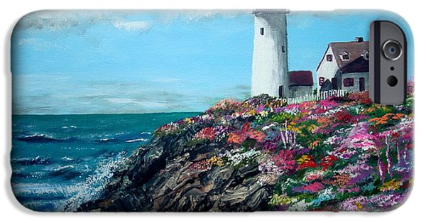 Jack Skinner iPhone Cases - Lighthouse at Flower Point iPhone Case by Jack Skinner