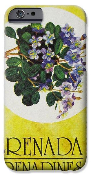 Botanic Illustration iPhone Cases - Lignum Vitae Guaiacum officinale iPhone Case by Lanjee Chee