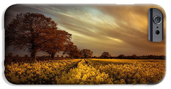 Agriculture iPhone Cases - Like an old master iPhone Case by Chris Fletcher