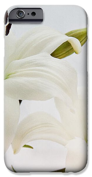 Like Heaven... iPhone Case by Angela Doelling AD DESIGN Photo and PhotoArt