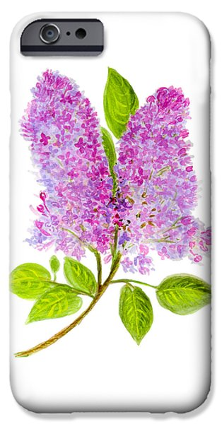 Flora Drawings iPhone Cases - Lilac iPhone Case by Irina Korsakova