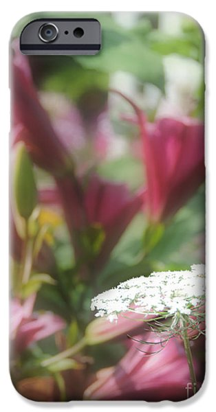Seductive iPhone Cases - Lilies and Lace iPhone Case by Helene Guertin
