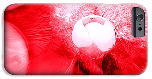 Abnormal iPhone Cases - Lilly Bud Study in red iPhone Case by Victoria Beasley