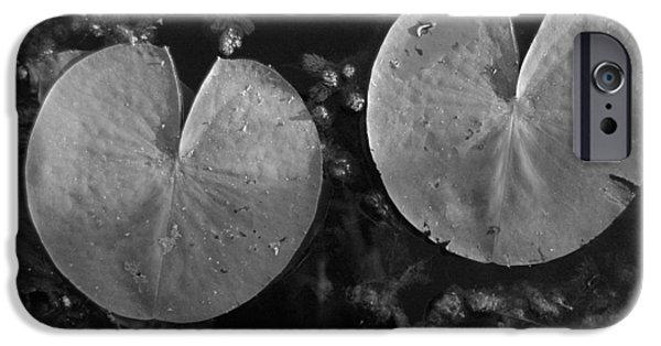 Lilly Pads iPhone Cases - Lilly pad symmetry  iPhone Case by Trish Hale
