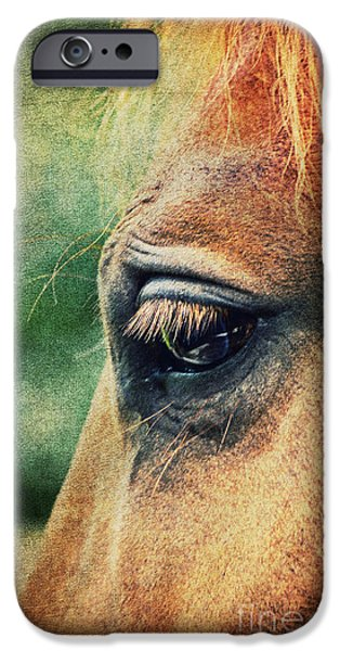 Close Up Mixed Media iPhone Cases - Lillys Eye iPhone Case by Angela Doelling AD DESIGN Photo and PhotoArt