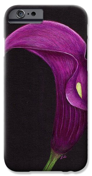 Nature Study Paintings iPhone Cases - Lily iPhone Case by Ekta Gupta