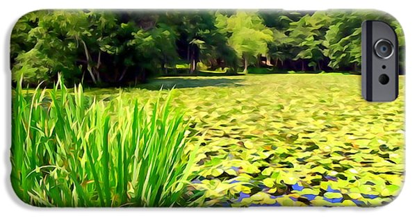 Nature Abstracts iPhone Cases - Lily Pond #4 iPhone Case by Ed Weidman