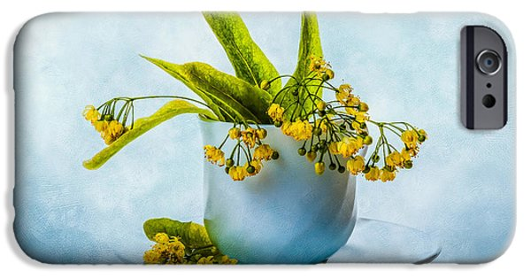 Botanical iPhone Cases - Linden tree flowers in a teacup iPhone Case by Alexander Senin