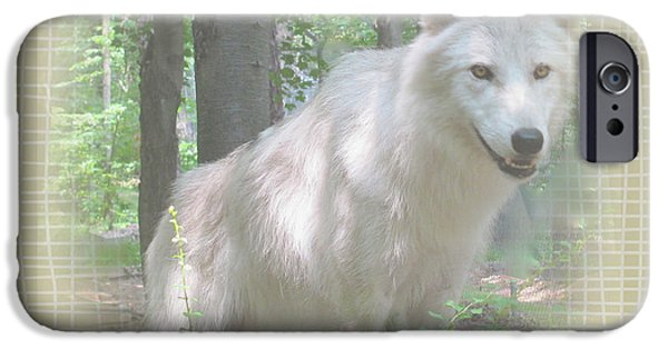 Arctic Wolf Mixed Media iPhone Cases - Linen Wolf Pose iPhone Case by Debra     Vatalaro