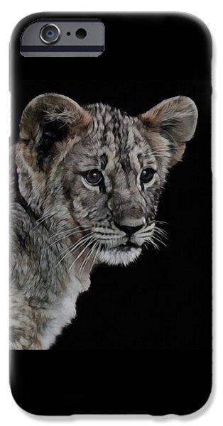Lion Digital iPhone Cases - Lion Cub Portrait iPhone Case by Ernie Echols