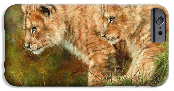 Lion Print iPhone Cases - Lion Cubs iPhone Case by David Stribbling