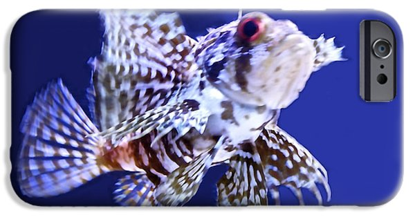 Beach iPhone Cases - Lion Fish iPhone Case by Sheela Ajith