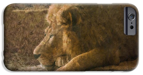 Painter Photo Paintings iPhone Cases - Lion King iPhone Case by Jack Zulli
