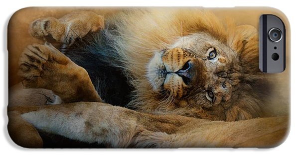 Photos Of Cats iPhone Cases - Lion Love 2 iPhone Case by Jai Johnson