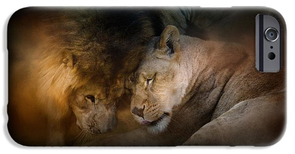 Photos Of Cats iPhone Cases - Lion Love iPhone Case by Jai Johnson