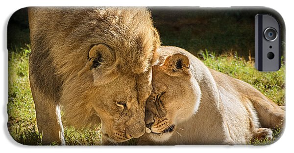 Couple iPhone Cases - Lion Love iPhone Case by Jamie Pham