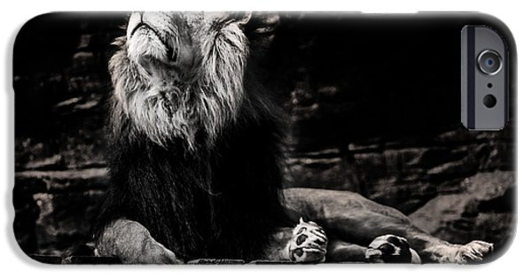 Power Animal iPhone Cases - Lion Rock iPhone Case by Martin Newman
