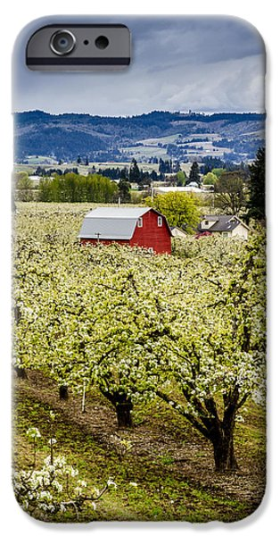 Rainy Day iPhone Cases - LItte Red Barn in the Blooms iPhone Case by Teri Virbickis