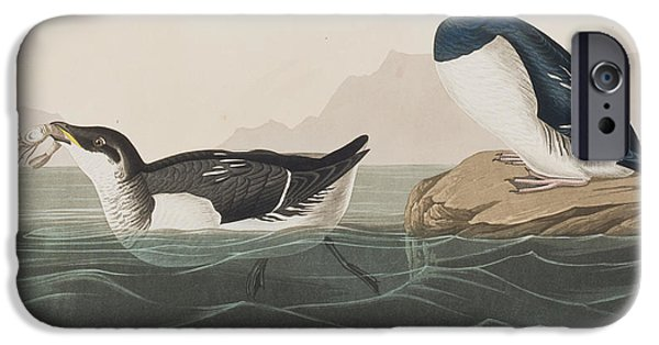 Little iPhone Cases - Little Auk iPhone Case by John James Audubon