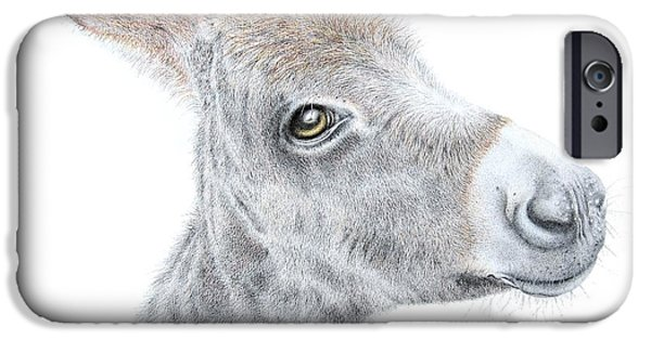 Donkey iPhone Cases - Little Donket II iPhone Case by Sandra Moore