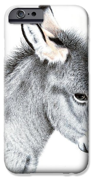 Donkey iPhone Cases - Little Donkey iPhone Case by Sandra Moore