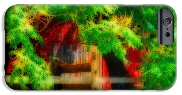 Old Barn iPhone Cases - Little Red Barn iPhone Case by Kathy Franklin