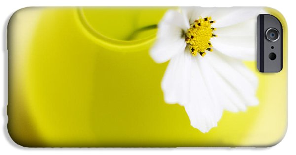 Flower iPhone Cases - Little Yellow Vase iPhone Case by Rebecca Cozart