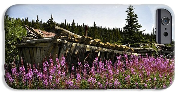 Town iPhone Cases - Lodge in Fireweed iPhone Case by Cathy Mahnke