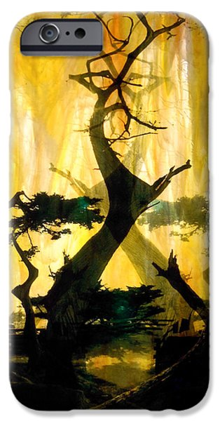 Landscapes Glass iPhone Cases - Lone Cypress iPhone Case by Mykel Davis