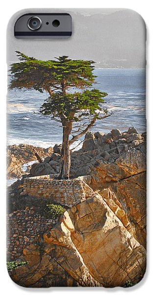 Sea iPhone Cases - Lone Cypress - The icon of Pebble Beach California iPhone Case by Christine Till