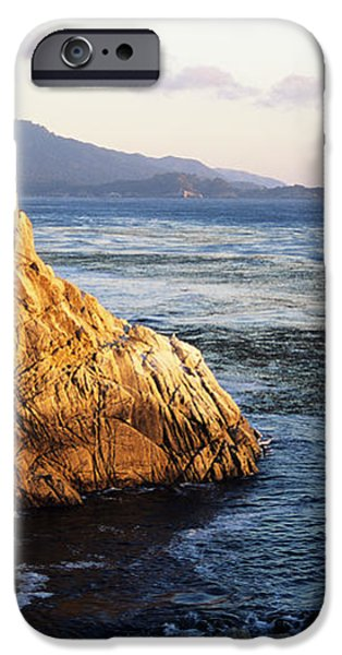 Lone Cypress Tree iPhone Case by Michael Howell - Printscapes