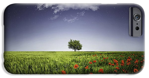 Crops iPhone Cases - Lone tree a poppies field iPhone Case by Bess Hamiti