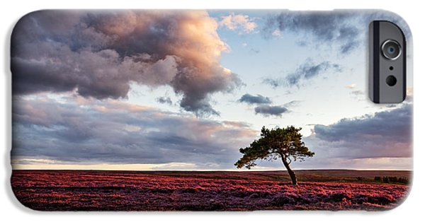 The North iPhone Cases - Lone Tree Egton Moor iPhone Case by Janet Burdon