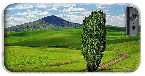 One iPhone Cases - Lone Tree - Road - Steptoe Butte iPhone Case by Nikolyn McDonald