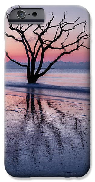 Botany Photographs iPhone Cases - Loneliness iPhone Case by Mike Lang